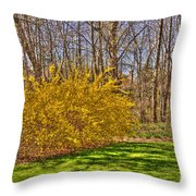 Cool Day Of Spring Throw Pillow