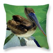 Cool Footed Pelican Throw Pillow