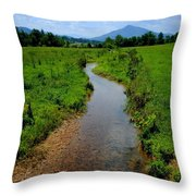 Cool Mountain Stream Throw Pillow by Frozen in Time Fine Art Photography