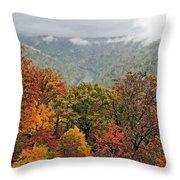 Cooper's Rock West Virginia Throw Pillow
