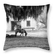 Coosaw - Grazing Free Throw Pillow
