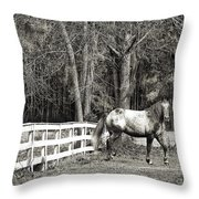 Coosaw - Outside The Fence Black And Wite Throw Pillow