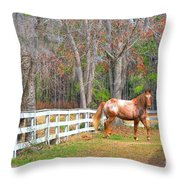 Coosaw - Outside The Fence Throw Pillow