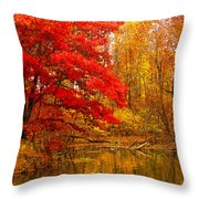 Copper Cove Throw Pillow