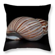 Copper Stripes Throw Pillow