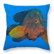 Coral Grouper, Kimbe Bay, Papua New Throw Pillow