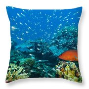 Coral Reef In Thailand Throw Pillow