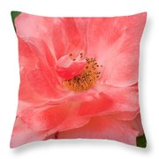 Coral Rose Portrait Throw Pillow