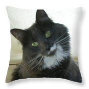 Corky 0124 Throw Pillow