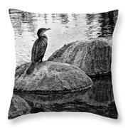 Cormorant On Rocks Throw Pillow