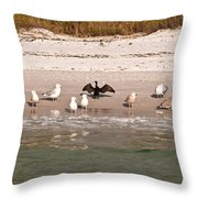 Cormorant Stands Out Throw Pillow