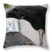 Cormorant With Radio Collar Throw Pillow