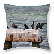 Cormorants Key West Throw Pillow