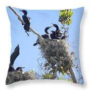 Cormorants Nesting Throw Pillow