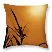 Corn Field Haze  Throw Pillow