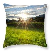 Corn Field In Backlight Throw Pillow
