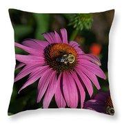 Corn Flower Throw Pillow