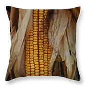 Corn Stalks Throw Pillow