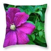 Corner Clematis Throw Pillow