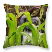 Cornstalks Throw Pillow