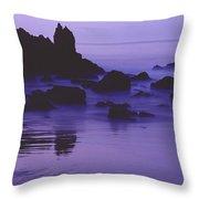 Corona Del Mar 5 Throw Pillow
