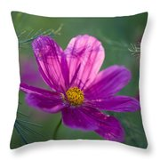 Cosmos Dreamland Throw Pillow