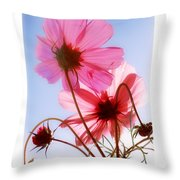 Cosmos Flowers Throw Pillow