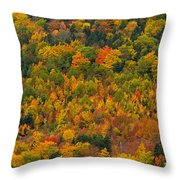 Cottage In Front Of Autumn Colours Throw Pillow