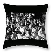 Cotton Classic B And W Throw Pillow