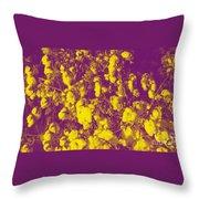 Cotton Golden Southwest Throw Pillow