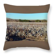Cotton Landscape Protected 01 Throw Pillow