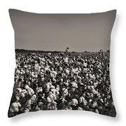 Cotton The Heart Of Dixie Throw Pillow