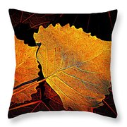 Cottonwood   Throw Pillow by Chris Berry