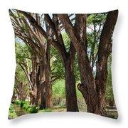 Cottonwood Desert Oasis - Utah Throw Pillow