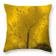 Cottonwood Tree April 2012 In Gold Throw Pillow