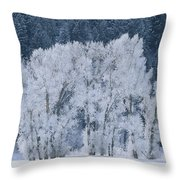Cottonwood Trees With Frost Throw Pillow