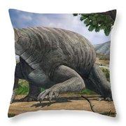 Cotylorhynchus Bransoni, A Prehistoric Throw Pillow