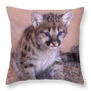 Cougar Kitten Throw Pillow
