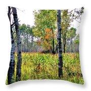 Country Autumn Throw Pillow