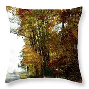 Country Buggie Sign Throw Pillow
