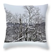 Country Christmas 5 Throw Pillow