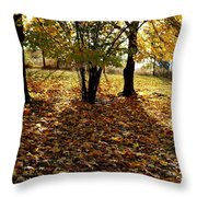 Country Color 11 Throw Pillow