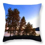 Country Color 16 Throw Pillow