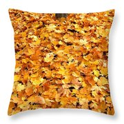 Country Color 17 Throw Pillow