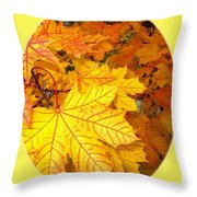 Country Color 18 Throw Pillow