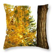 Country Color 19 Throw Pillow