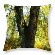 Country Color 20 Throw Pillow