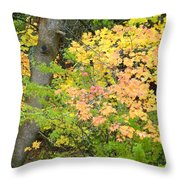 Country Color 23 Throw Pillow