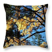 Country Color 25 Throw Pillow