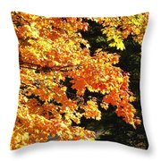 Country Color 26 Throw Pillow